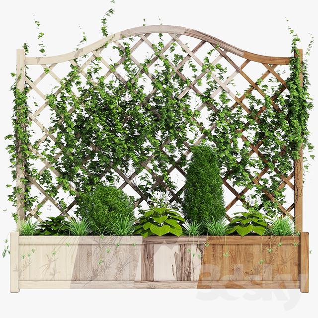 مدل سه بعدی گیاهان تزئینی