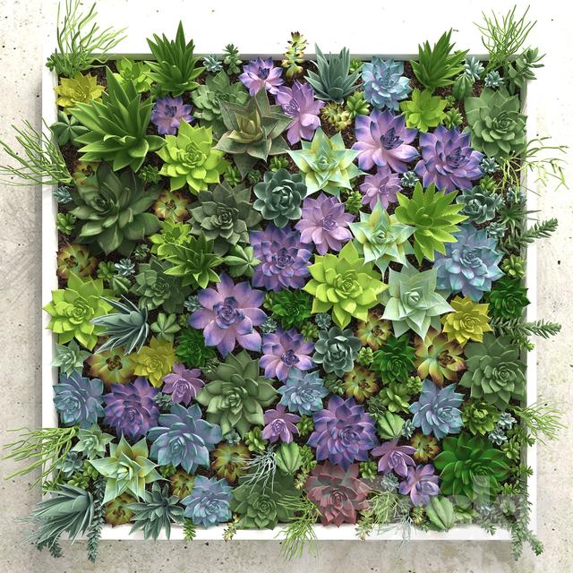 دانلود 70 آبجکت گل و گیاهان زینتی از Pro 3DSky