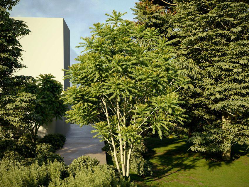 دانلود 24 آبجکت گل و گیاه